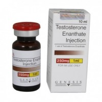 Genesis Testosterone enanthate 250mg/ml 10ml